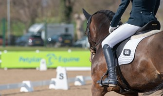 Petplan Equine Area Festival Championships 2020 - WILDCARDS